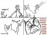 vacuum cleaner cat